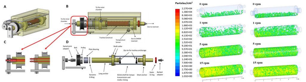 Design of Bioreactors